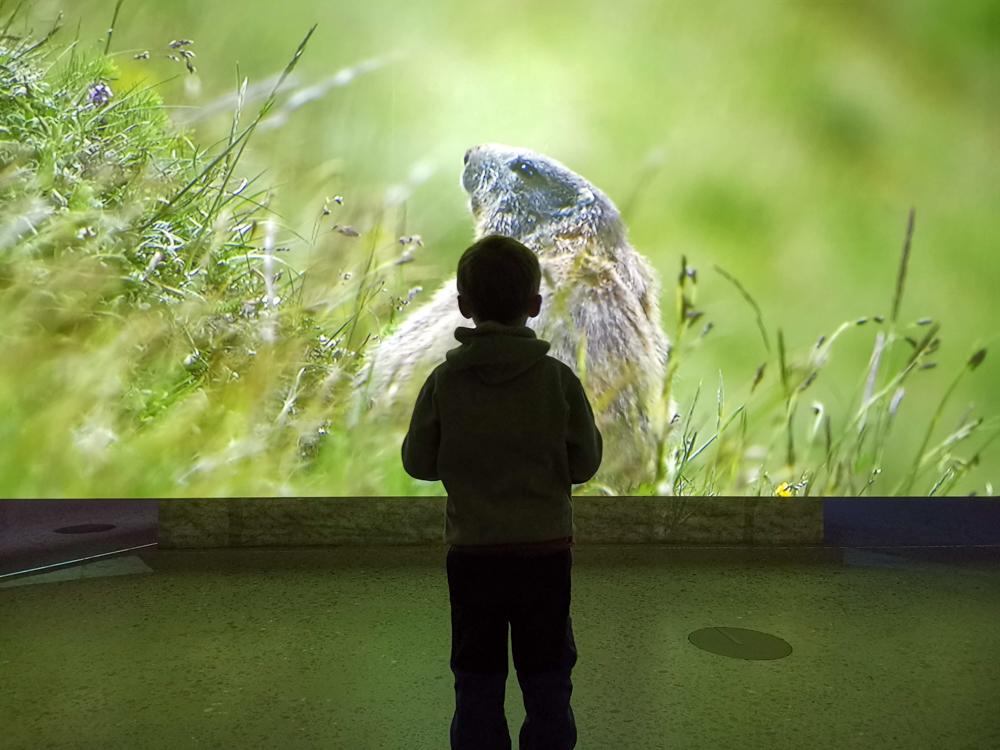 Familienwochenende Schweizerischer Nationalpark Engadin Graubünden Schweiz Tierfilm Nationalparkzentrum Zernez