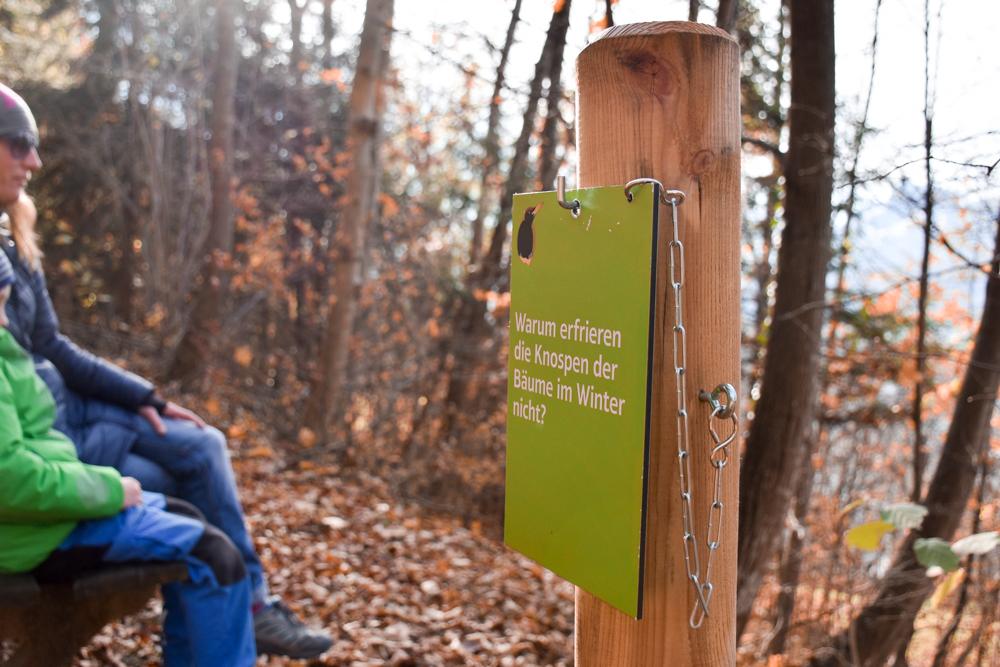 Ausflugstipp Walderlebnispfad Vaduz Liechtenstein Ausruhen mit Aussicht