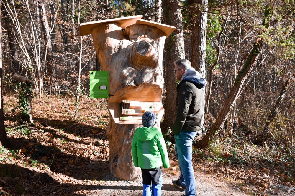Ausflugstipp Walderlebnispfad Vaduz Liechtenstein interessante Stationen unterwegs