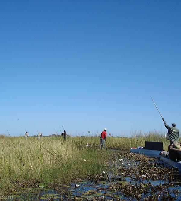 Wildes campen im Okavango Delta