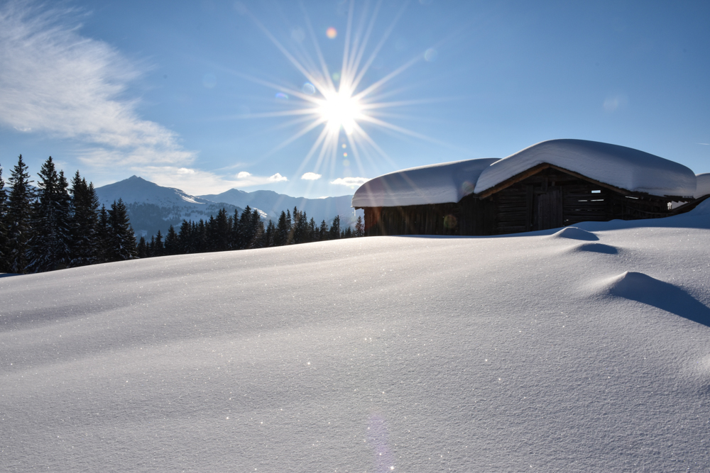Winterausflug Schlittelweg Pany Prättigau Graubünden Schweiz