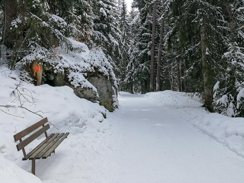 Winterweekend Laax wellnessHostel3000 Graubünden Schweiz Winterwanderung Caumasee Crestasee Flims