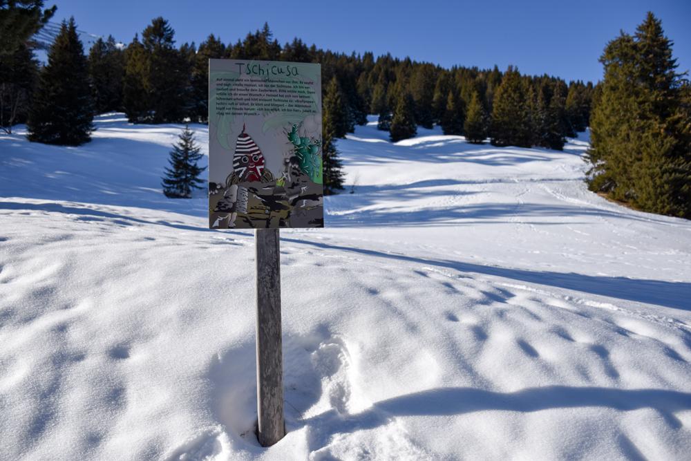 Winterwanderung Edelweiss-Rundweg Brambrüesch Graubünden Schweiz Schlitten
