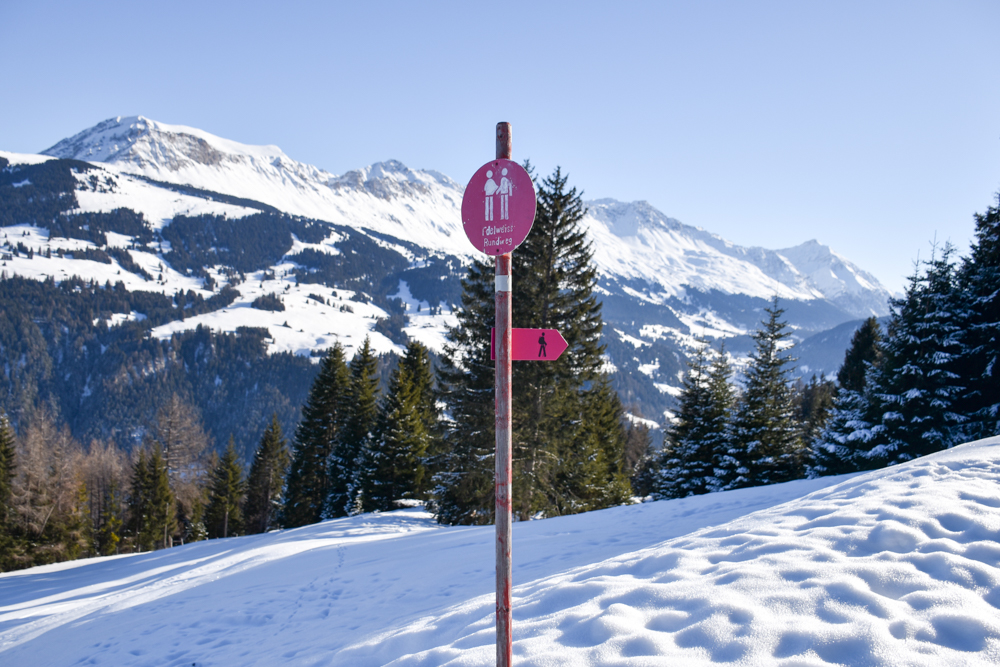 Winterwanderung Edelweiss-Rundweg Brambrüesch Graubünden Schweiz Wegweiser