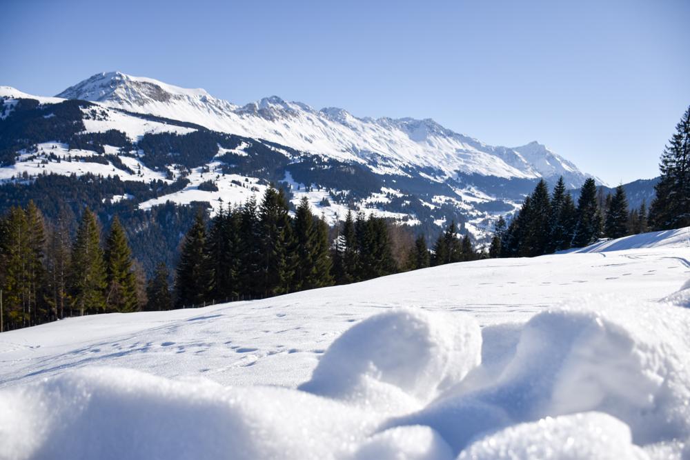 Winterwanderung Edelweiss-Rundweg Brambrüesch Graubünden Schweiz Winterlandschaft mit Blick auf das Parpaner Rothorn