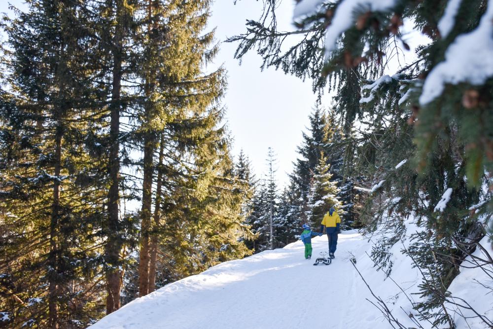 Winterwanderung Edelweiss-Rundweg Brambrüesch Graubünden Schweiz