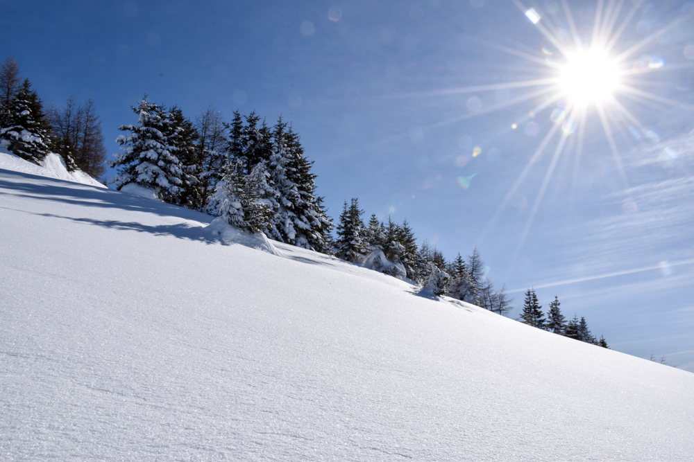 Winterwanderung Rundweg Feldis Viamala Graubünden Schweiz Winterwunderland