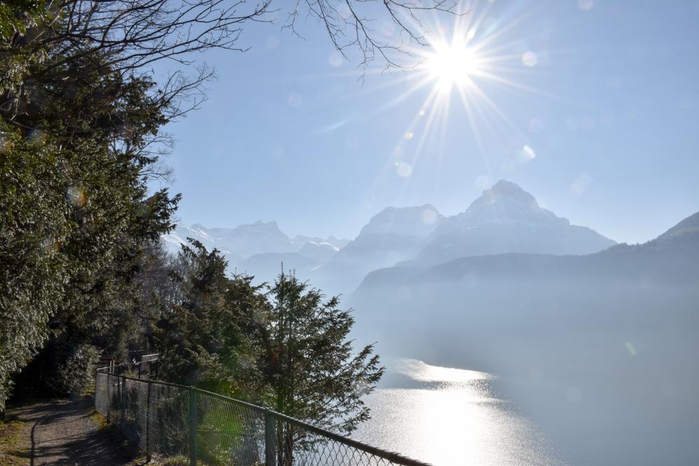 Unterkunft Reka-Ferienresort Swiss Holiday Park Morschach Schwyz Schweiz Aussicht Vierwaldstättersee Waldpark