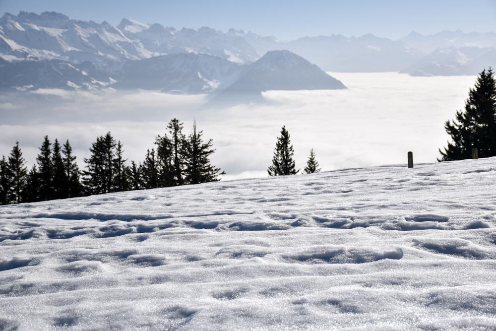 Winterwanderung Rigi Ausflug Familie Zentralschweiz Schnee und Aussicht
