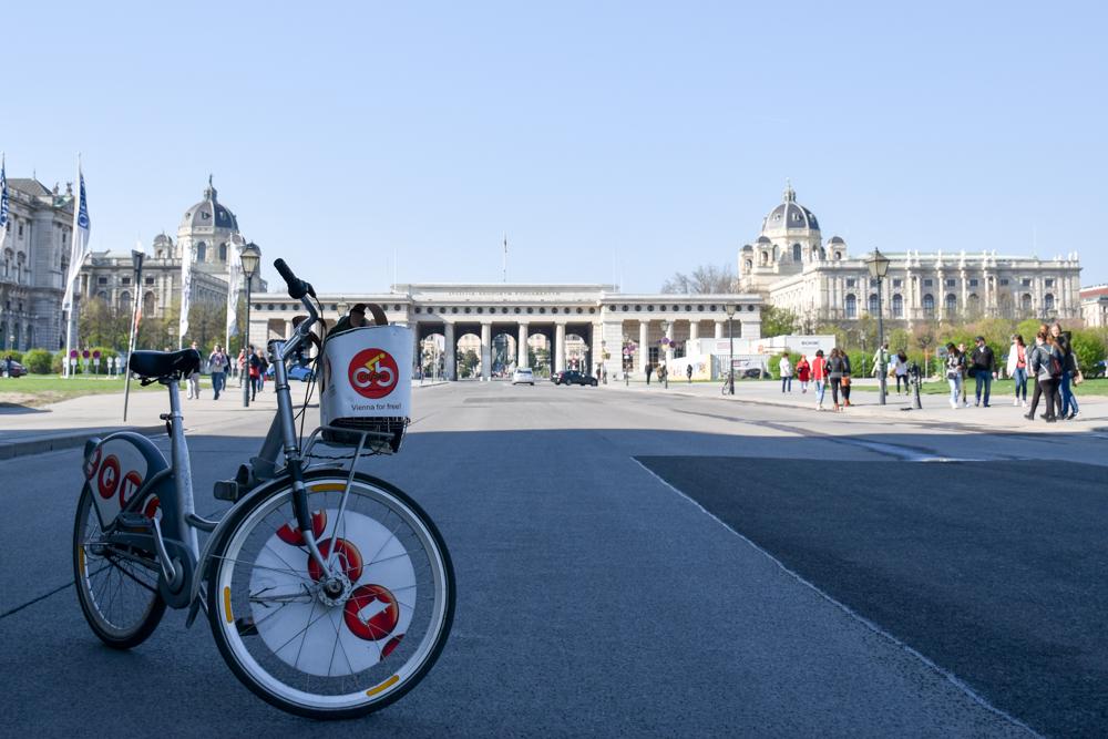 Meine Best of Österreich Reisetipps Fahrradfahren in Wien