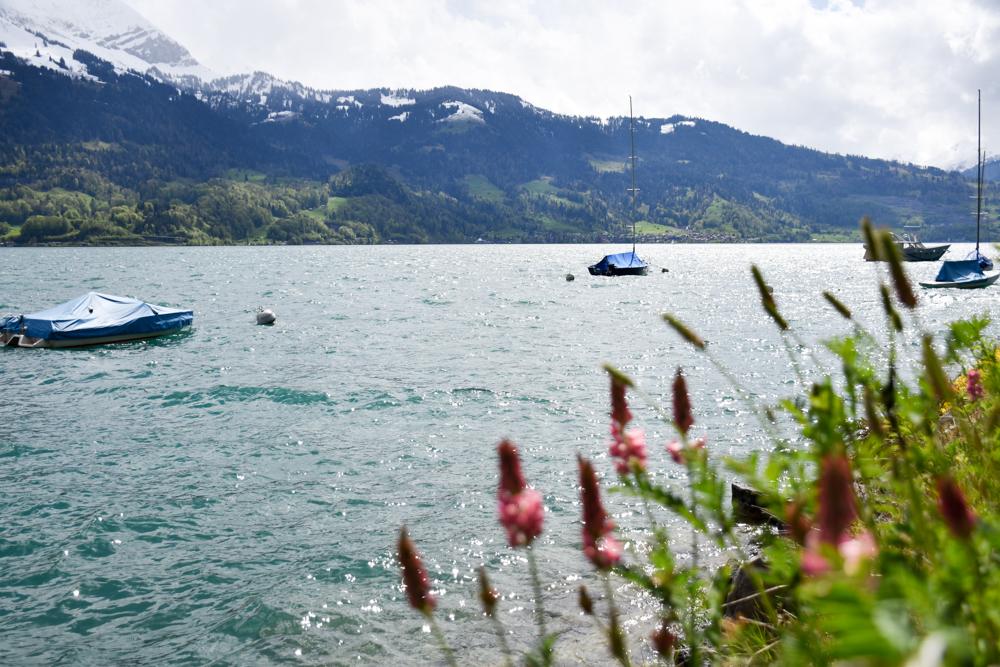 Interlaken Berner Oberland Schweiz mit Kind Thunersee und Berner Alpen