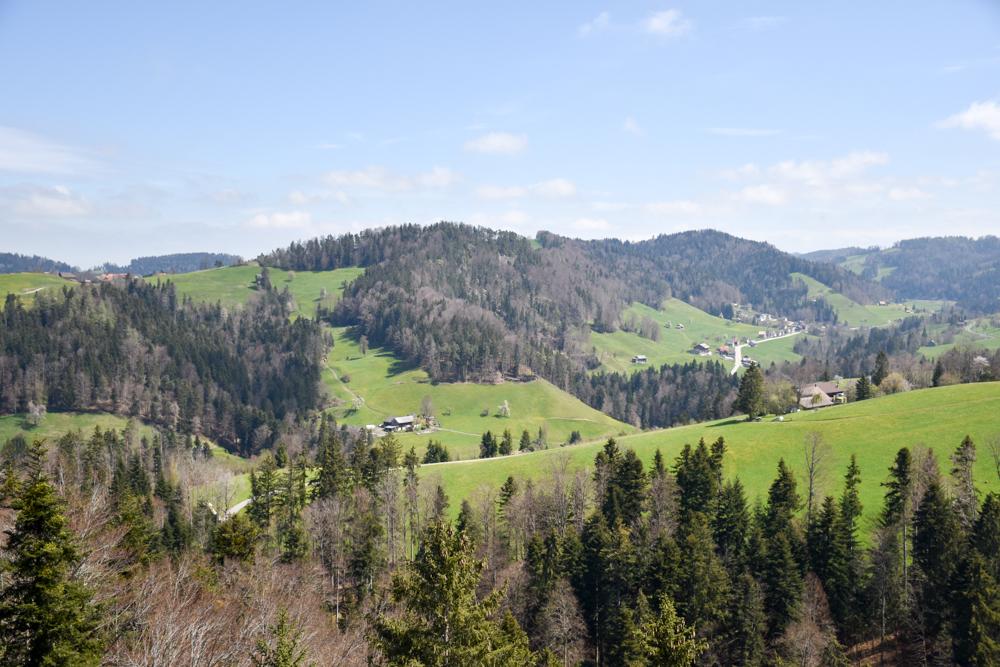 Ausflugstipp Ostschweiz Baumwipfelpfad Neckertal Maestranis Chocolarium Toggenburg Aussicht Plattform