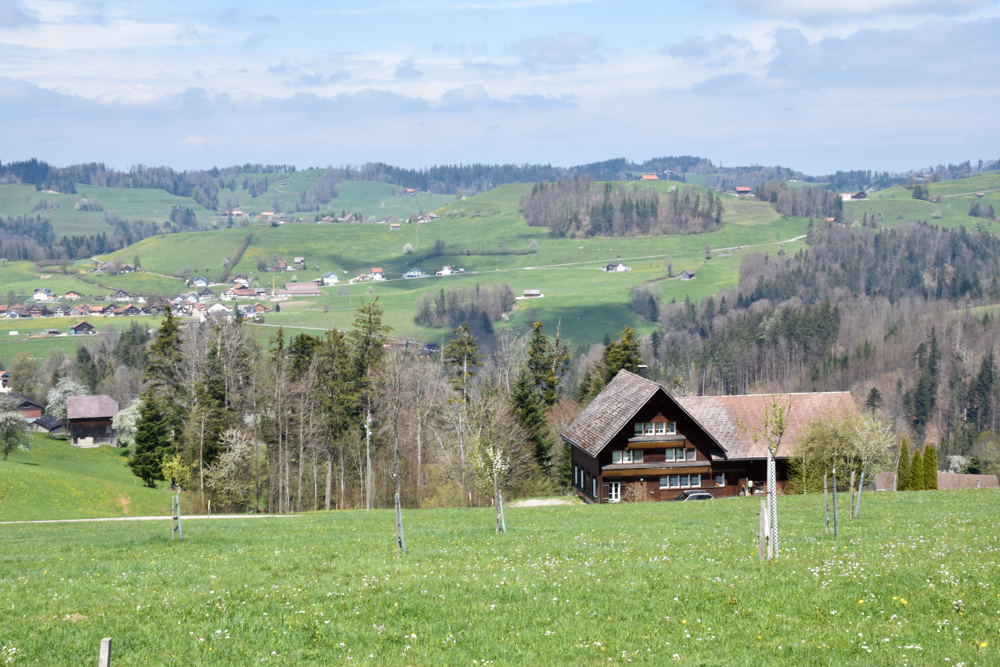 Ausflugstipp Ostschweiz Baumwipfelpfad Neckertal Maestranis Chocolarium Toggenburg