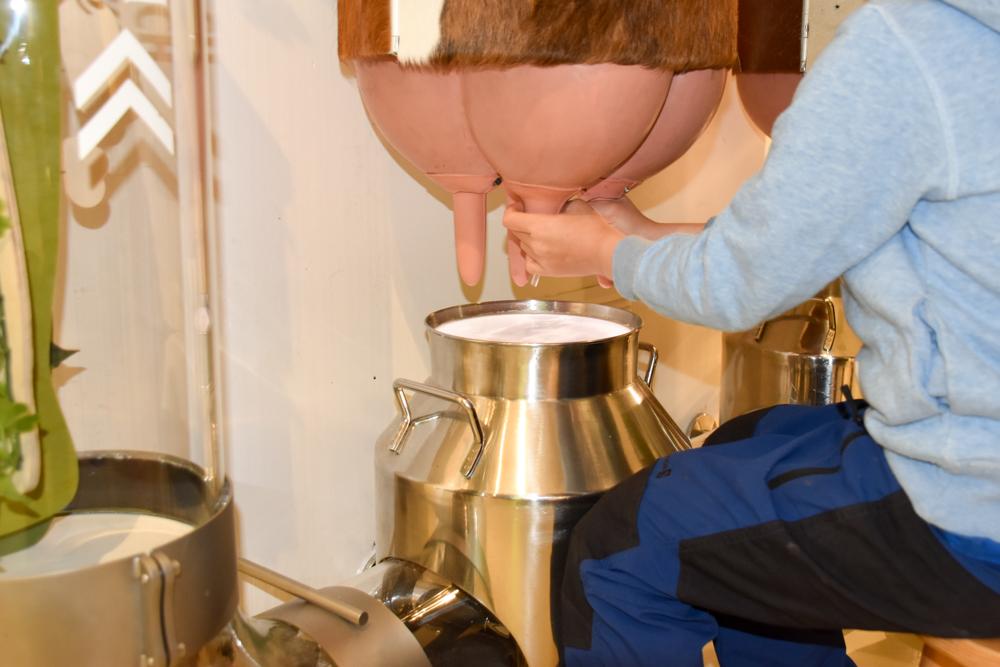 Ausflugstipp Ostschweiz Baumwipfelpfad Neckertal Maestranis Chocolarium Melken