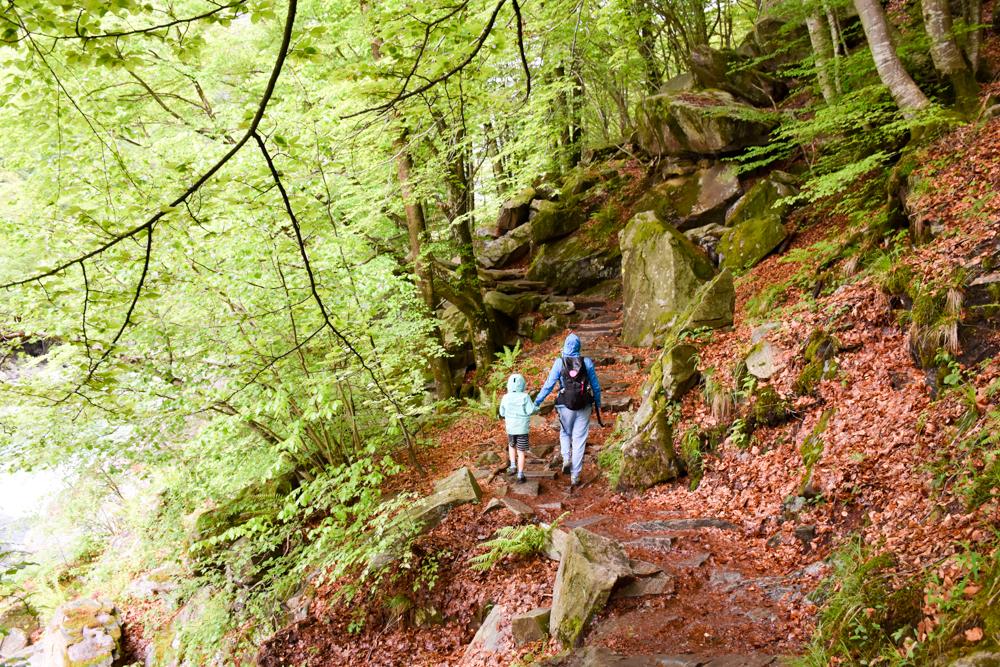 Ausflugstipp Tessin Kugelbahn Wanderung BoBosco Verzascatal Schweiz Waldweg