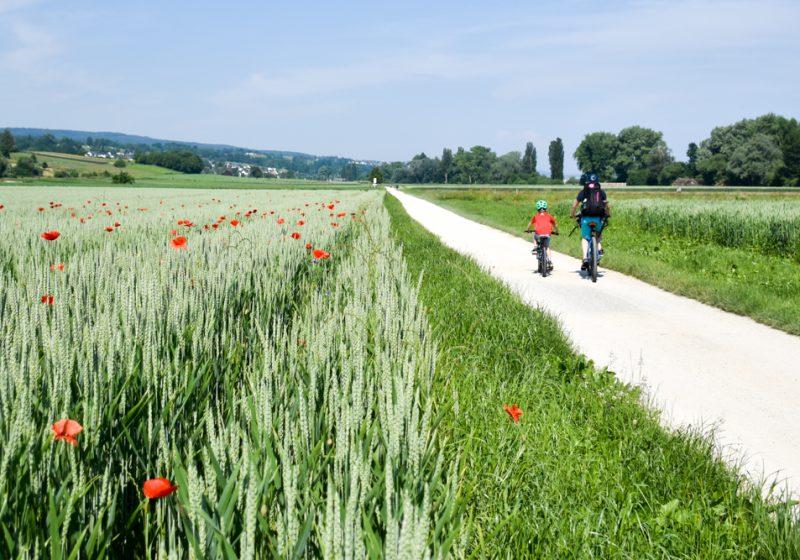 Unterwegs auf der Familienroute: Familienfreundliche Fahrradtour von Bad Ragaz bis Schaffhausen