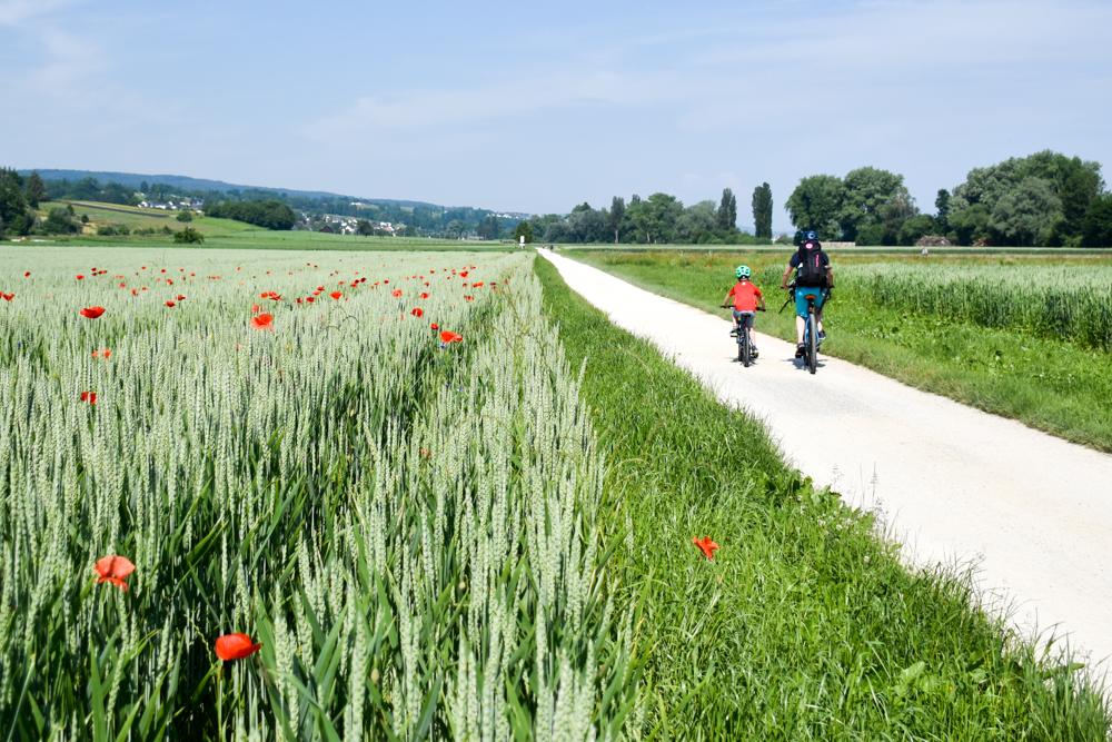 Familienroute Bodensee Rhein Bad Ragaz bis Schaffhausen Fahrradtour Schweiz