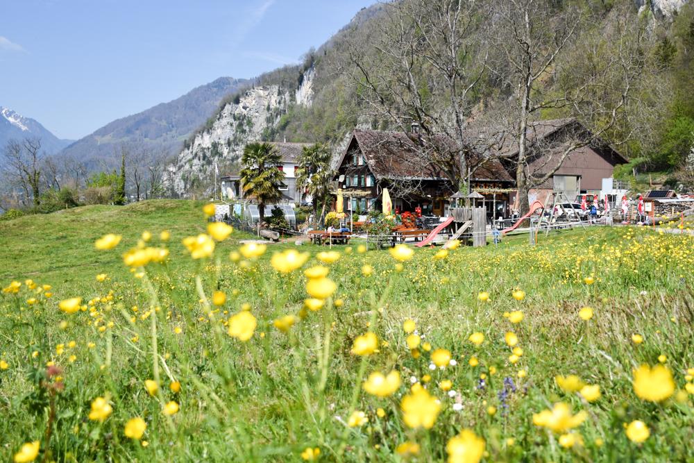 Themenwanderung Walensee Betlis Schweiz Amdo Mungg und Walis Schatz Restaurant Burg Strahlegg