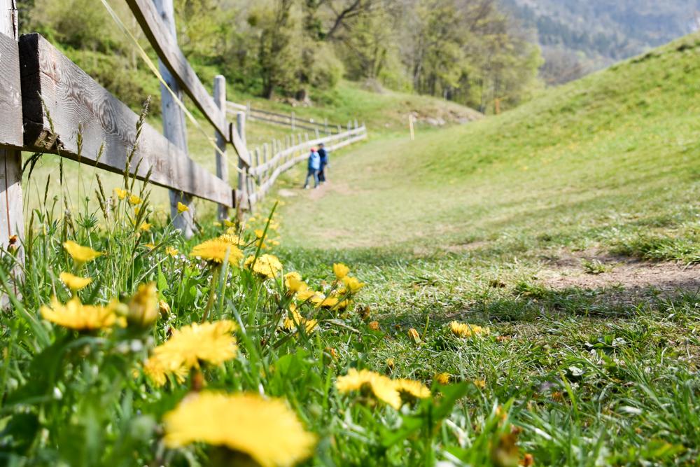 Themenwanderung Walensee Betlis Schweiz Amdo Mungg und Walis Schatz Wanderung durch tolle Landschaften