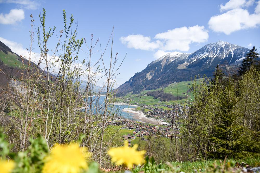 Unterkunftstipp Hotel Dorint Blüemlisalp Beatenberg Interlaken Schweiz Brünigpass