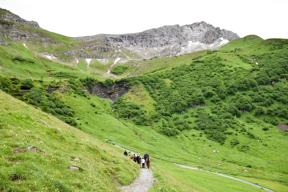 Lamatrekking Tipi Übernachtung Liechtenstein Rundwanderung durch die Bergwelt um Malbun