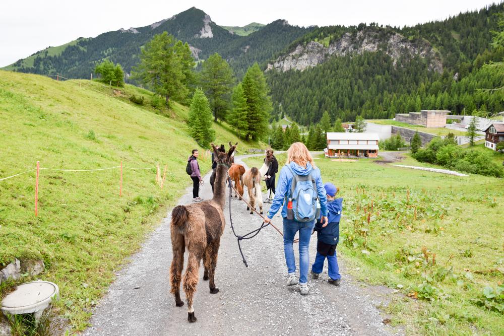 Lamatrekking Tipi Übernachtung Liechtenstein Travel Sisi Esther Mattle und Sohn unterwegs in Malbun