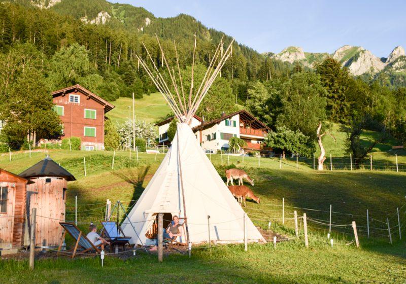 Lamatrekking Tipi Übernachtung Triesenberg Malbun Liechtenstein