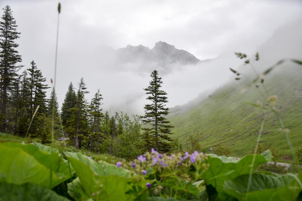 Carschinahütte SAC mit Kindern Prättigau Graubünden Schweiz herrlicher Ausblick auf die Prättigauer Berge