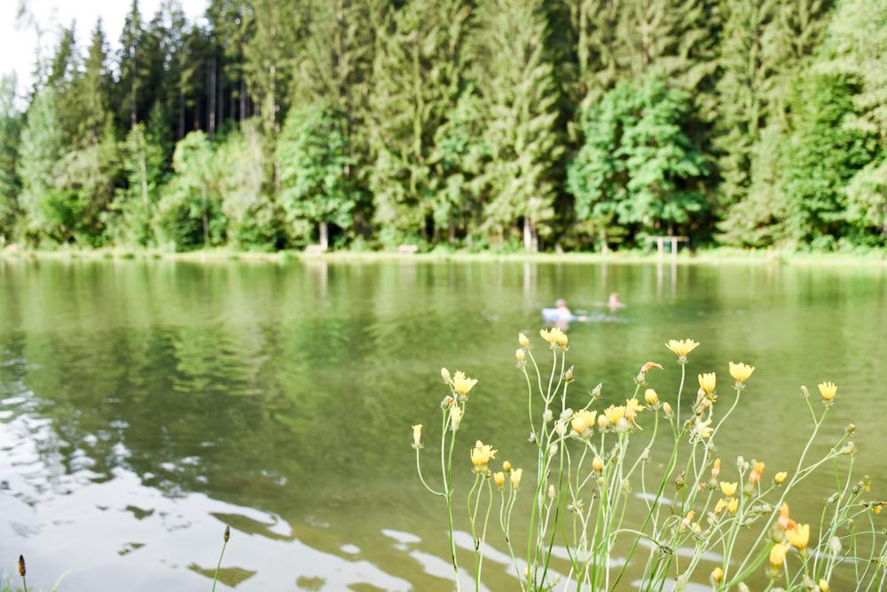 Camping Rundreise Kroatien Familie Waldsee Österreich