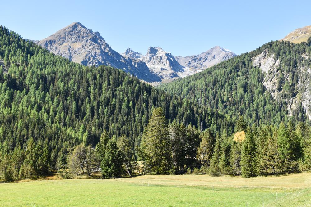 Ausflugstipp Bergün Graubünden Schweiz Landschaft Bahnerlebnisweg Albula